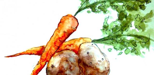 The Brightmoor Farmway Cookbook
