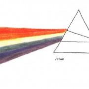 Elementary Art & Science Curriculum